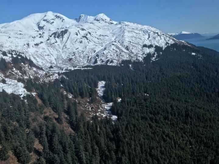 Photos from Pacific Rim Backcountry Guides's post