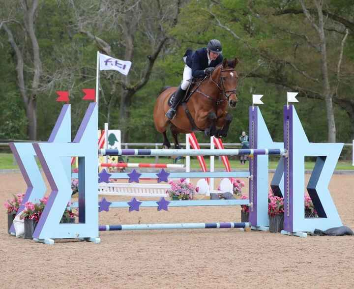 Photos from Paul Crago Showjumping ltd's post