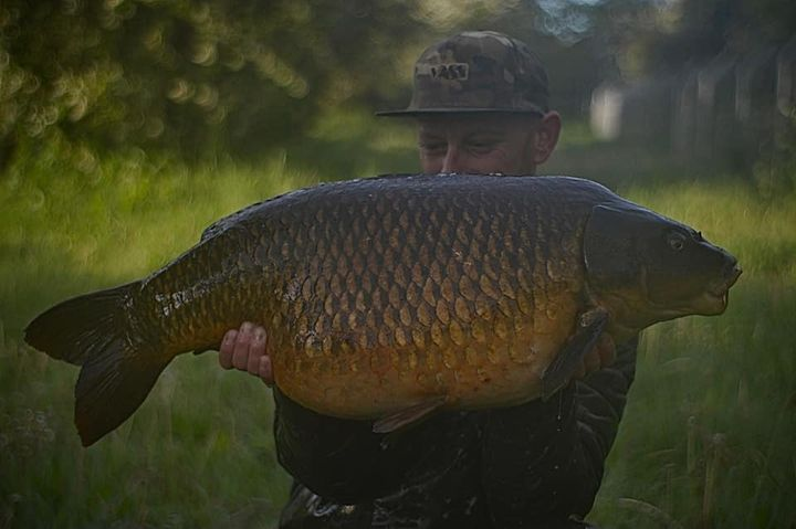 Photos from Southampton carp leads's post