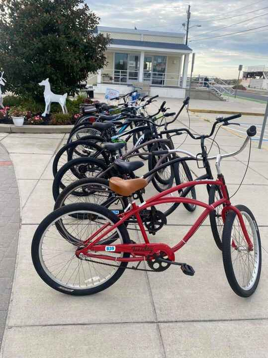 Photos from D R Bradley's Bikes Rentals's post